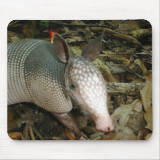 Baby Armadillo Mouse Pad