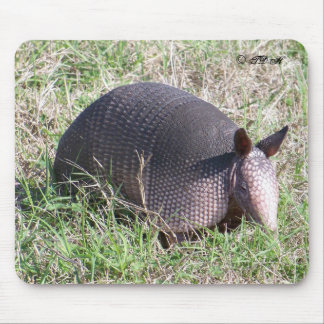 Baby Armadillo ©TDH Mouse Pad