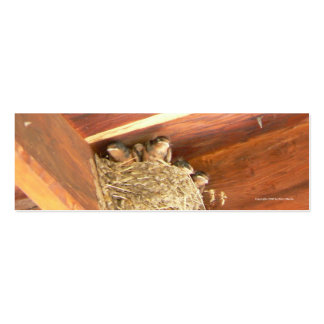 Baby Barn Swallows Bookmark Pack Of Skinny Business Cards