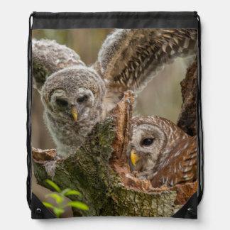 Baby Barred Owl, Strix varia Drawstring Backpacks