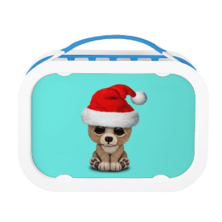 Baby Bear Wearing a Santa Hat Lunch Box