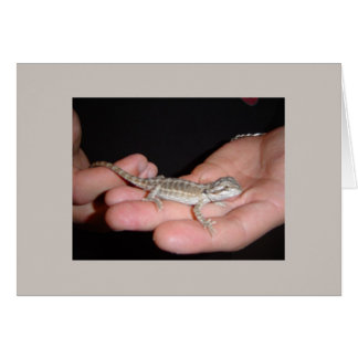 Baby Bearded Dragon Note Card
