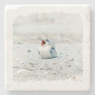 Baby bird coaster