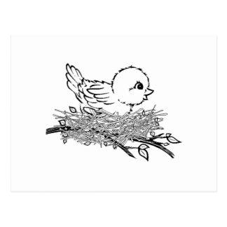 Baby Bird In Nest Post Cards