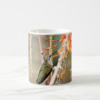 Baby Black Hummer in Orange Coffee Cup