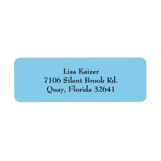 Baby Blue Simple Plain Return Address Labels