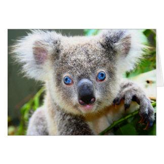 """Baby Blues"" Koala Card"