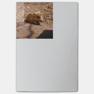 baby boar post-it notes