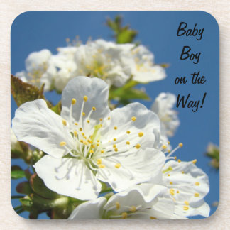 Baby Boy on the Way! coasters cork Blue Sky Floral