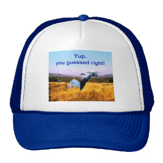 Baby boy you guesses right trucker hat
