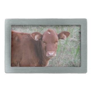 Baby Brown Cow face Belt Buckle