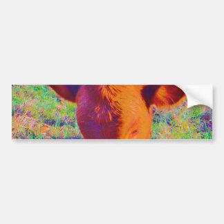 Baby Brown Cow face. RAINBOW GRASS Bumper Sticker