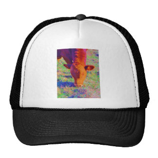 Baby Brown Cow face. RAINBOW GRASS Mesh Hats