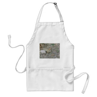 Baby Bunny And Grass Blade Standard Apron