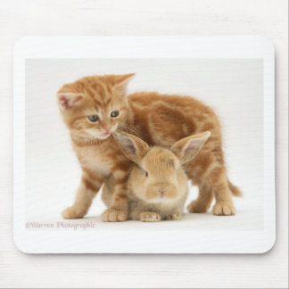 Baby Bunny and Orange Kitten Meet Mouse Pad