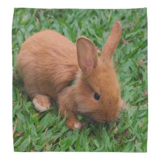 Baby Bunny Bandana