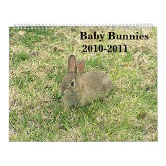 Baby Bunny Calendar 2010-2011