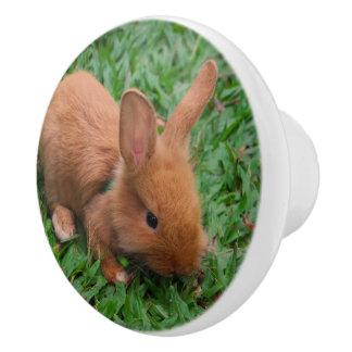 Baby Bunny Ceramic Knob