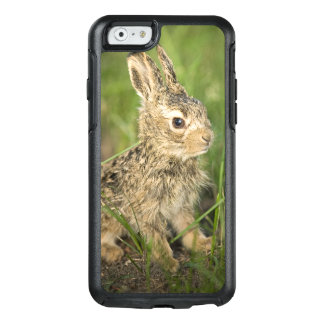 Baby Bunny in the Grass OtterBox iPhone 6/6s Case