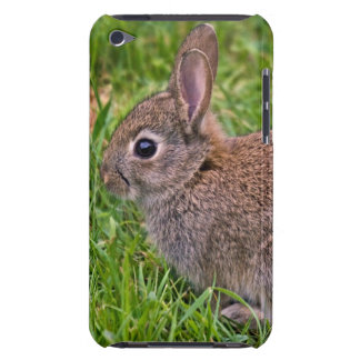 Baby Bunny iPod Case