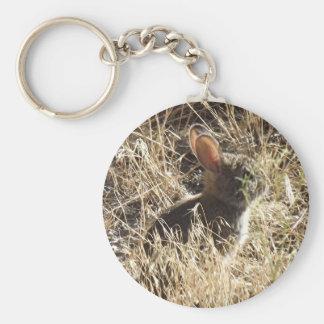 Baby Bunny Key Chains