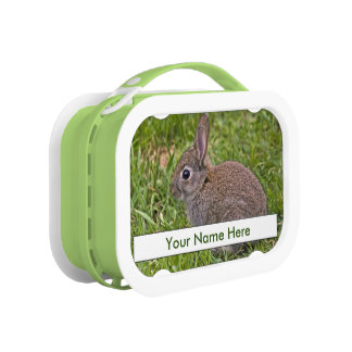 Baby Bunny Lunch Box (Add Your Name)