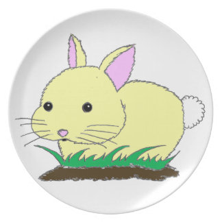 Baby Bunny Rabbit Plate :)