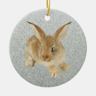 BABY BUNNY ROUND CERAMIC DECORATION