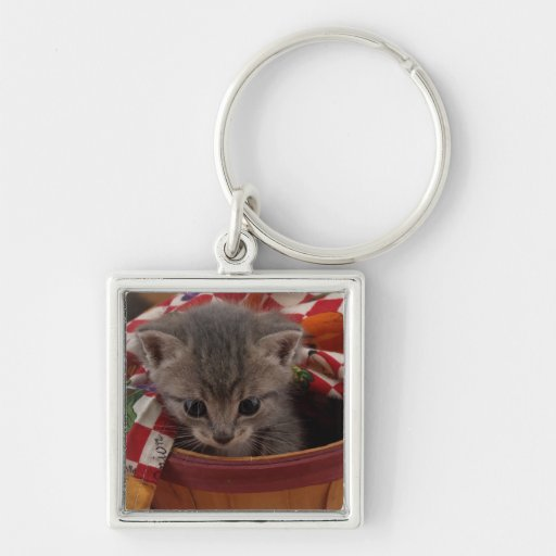 Baby Buster Keychains