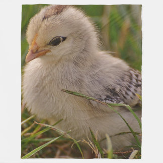 Baby Chick Fleece Blanket