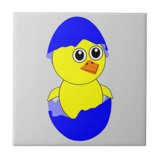 Baby Chick Maternity Baby Boy Blue Tile