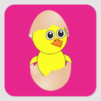 Baby Chick Maternity Square Sticker