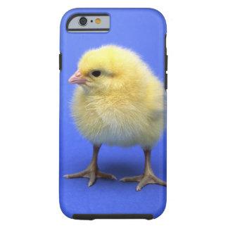 Baby chicken. tough iPhone 6 case