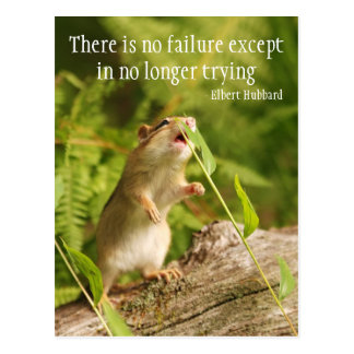 Baby Chipmunk Try Quote Postcard