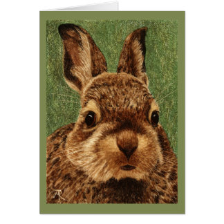 Baby Cottontail Rabbit Card