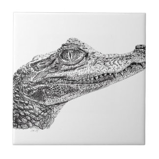 Baby Crocodile Ink Drawing Small Square Tile