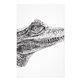 Baby Crocodile Ink Drawing Stationery