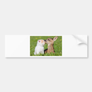 Baby Deer and Kitten Cuddle Bumper Sticker
