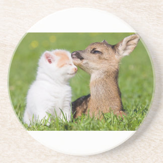 Baby Deer and Kitten Cuddle Coaster