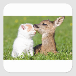 Baby Deer and Kitten Cuddle Square Sticker