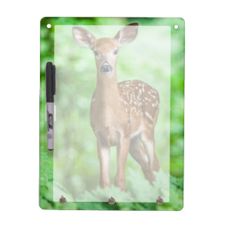 Baby Deer Fawn in the Forest Dry Erase Board