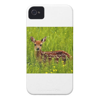 Baby Deer Fawn iPhone 4 Cover