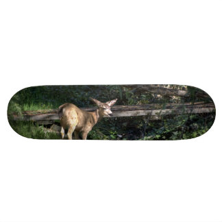 Baby Deer In The Forest Skateboard Deck