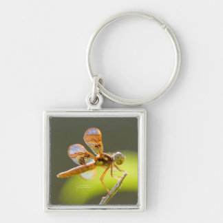Baby Dragonfly Lit By The Sun by Julie Everhart Silver-Colored Square Key Ring