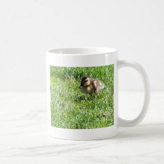 Baby duck coffee mugs