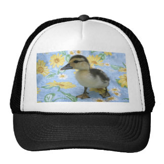 baby duckling on flowered background left mesh hats
