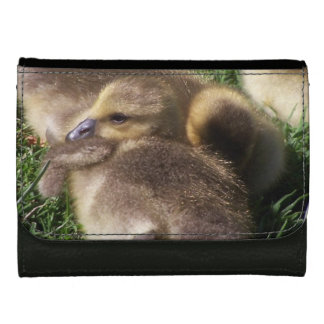 Baby Ducks Ducklings Bird Wildlife Animals Mallard Wallet For Women
