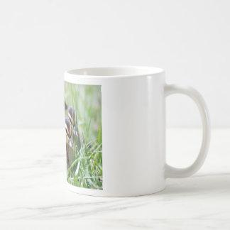Baby Ducks Coffee Mug