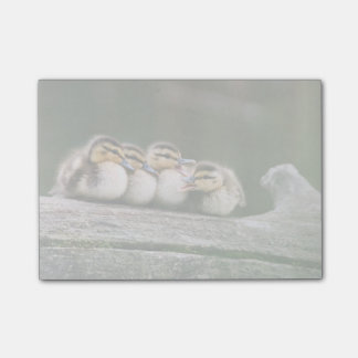Baby Ducks On Log Of Wood Post-it Notes