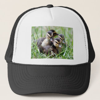 Baby Ducks Trucker Hat